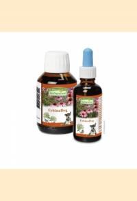 EchinaDog (Echinacea für Hunde)