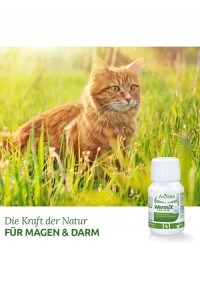 Aniforte® WermiX für Katzen (flüssig, 50ml)